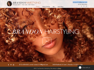 Hair Styling Website