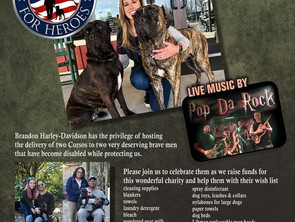 CALLING ALL MILITARY VETS &  HARLEY BIKE CLUBS!! Join Corsos For Heroes & Harley Davidson Feb. 28th!