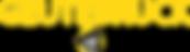 Logo_final_Geutebruck_ES_FB.png