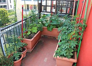 busy-balcony.jpg