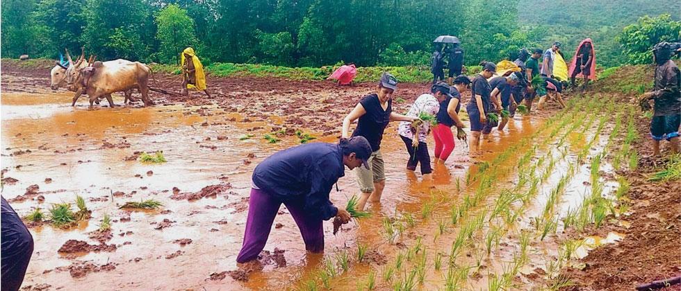 Agrotourism & Tasking