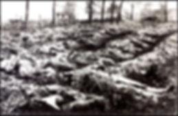 war dead france 1917.jpg