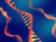 PRODUCTS-RNA16x12.jpg