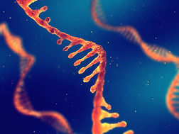 RNA SenseUp