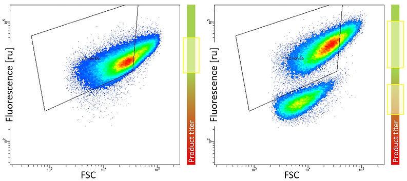 FACS Biosensor SenseUp Heterogeneity