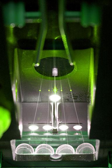 FACS Biosensor SenseUp
