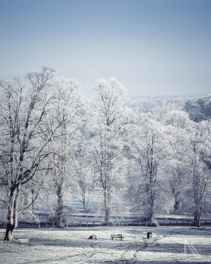 Thetford Town in the frost viewed from Castle Hill