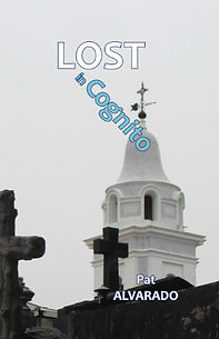 Lost in Cognito Cover for site.jpg