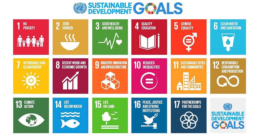 the-un-sustainable-development-goals_150