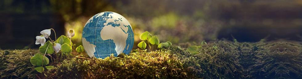 globe5_extended_sml7.jpg