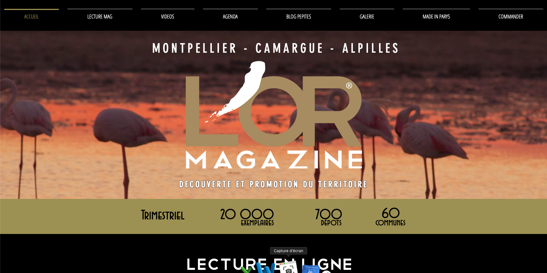 Magazine L'OR Magazine