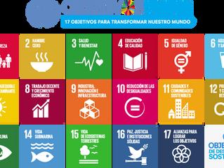 Haciendo nuestra parte: los Objetivos de Desarrollo Sostenible de la ONU