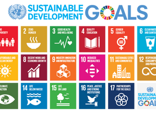 Doing Our Part: The UN Sustainable Development Goals