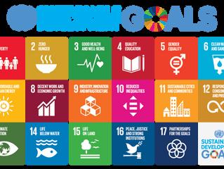 Doing Our Part: The UN Sustainable Development Goals