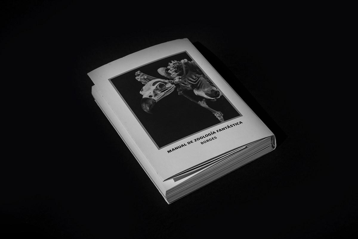 Interpretation of Manual de Zoología Fantástica  Jorge Luis Borges from 1957