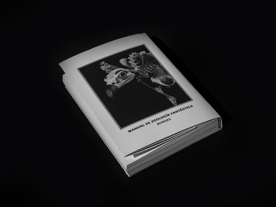 Editorial interpretation of Manual de Zoología Fantástica,book of Jorge Luis Borges from 1957. It contains a wide spectrum of fantastical creatures.  Read more ↓