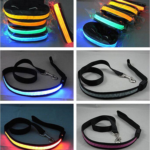 Battery Operated LED Leash