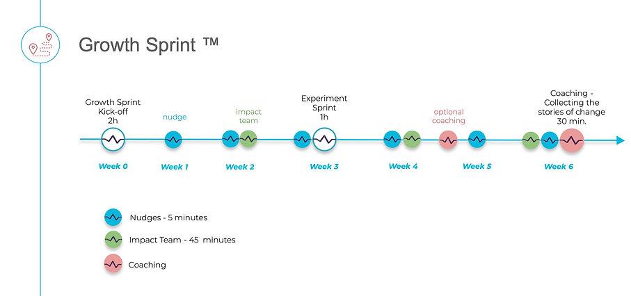 GrowthSprintTimeline_edited.jpg
