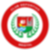escudo 2019 OK.png