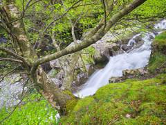 Lake District 4.jpg