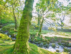 Lake District 3.jpg