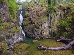 Lake District 6.jpg