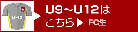 u9_u12_banner.png