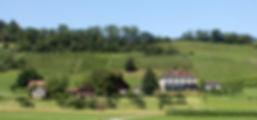 Gutshof Forst.jpg