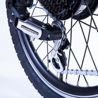 35 Speeds (7x5) of Pure Joy Rear Wheel Drive