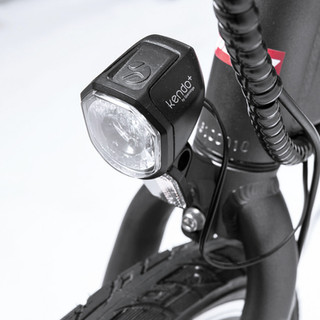 Spanninga LED Light