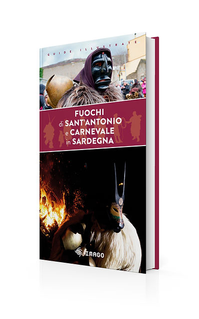 _Fuochi+Carnevale3D.jpg