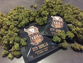 Vendita Cannabis Online