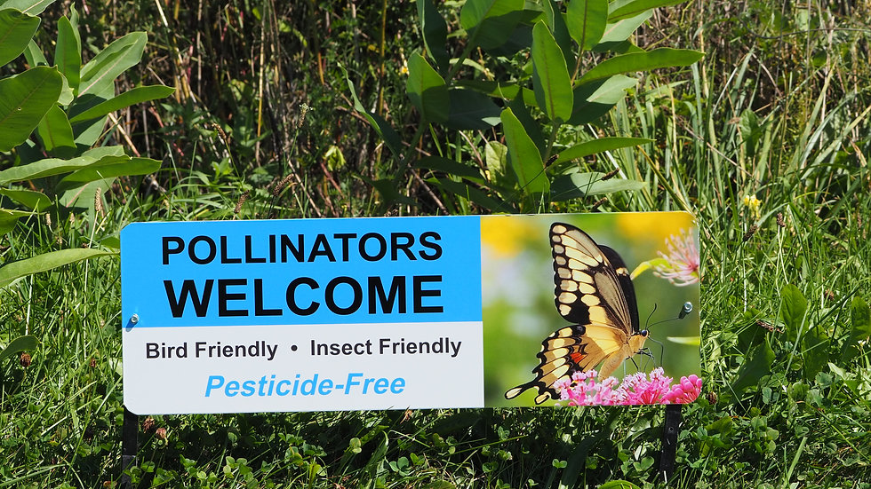 Pollinators Wecome sign (metal)