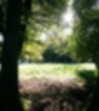 woodmancott2.jpg