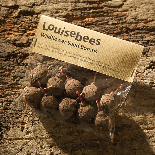 Packet of 10 Wildflower Seed Bombs
