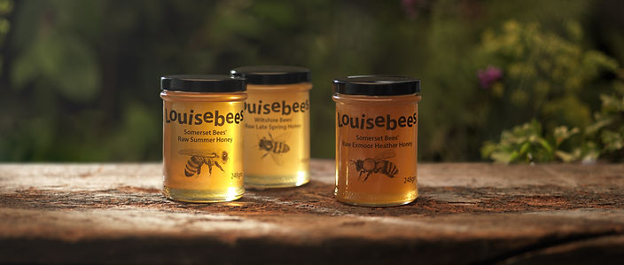 3 Varieties of 248gm Honey on wood L.jpg