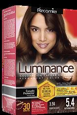 Luminance Kit 5.4 Chocolate.png