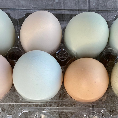 Farm Fresh Eggs - One dozen
