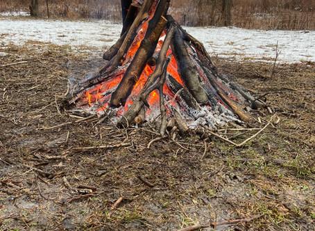 Winter Burn