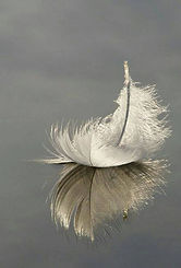 Hope - Feather.jpg