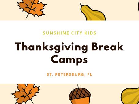 Thanksgiving Break Camps in St. Petersburg