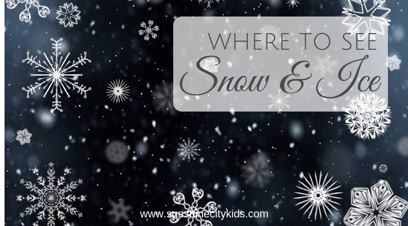 Where to See Snow Ice St. Petersburg Florida