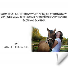 horses that heal research piece