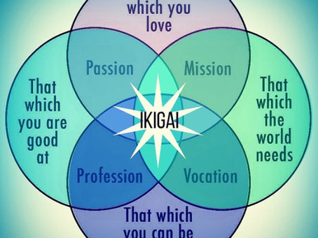 What's Your Ikigai?