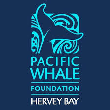 Pacific Whale foundation hervey bay logo