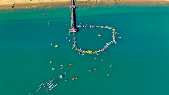 Social events paddle out for whales