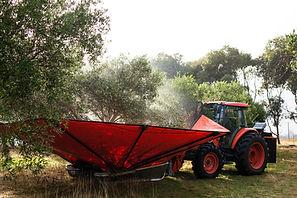Romley Estate Harvest-35.jpg