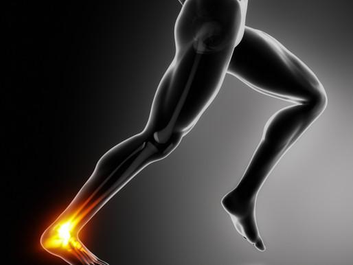 Stiffer Ankles, Faster Speed?