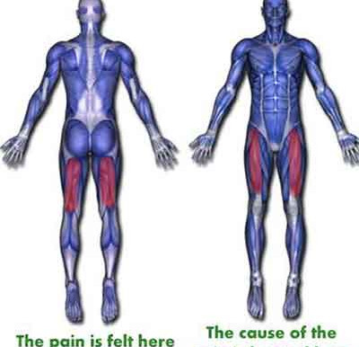 Pain is not a problem, It's a signal