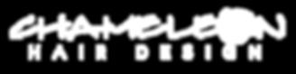 Signature Salon Logo